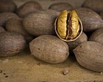 Nuts - Pecans Royalty Free Stock Photography