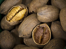 Nuts - Pecans Stock Images