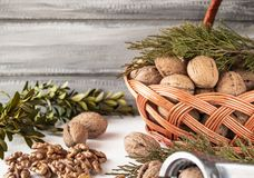 Nuts and peeled walnut kernels near the basket stock photography