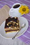 Nuts pie. Chocolate cake with almonds and walnuts stock photos