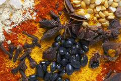 Nuts pulses and spices Stock Photography