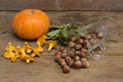 Nuts, pumpkin and mushrooms on wooden background. Close up stock photos