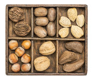 Nuts in rustic wooden box Stock Image
