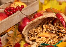 Nuts in a sack, fruits and vegetables on fallen leaves background, autumn season Stock Images