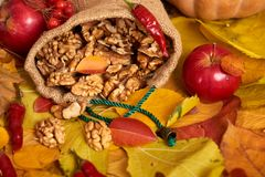 Nuts in a sack, fruits and vegetables on fallen leaves background, autumn season Royalty Free Stock Image