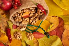 Nuts in a sack, fruits and vegetables on fallen leaves background, autumn season Stock Photo