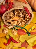 Nuts in a sack, fruits and vegetables on fallen leaves background, autumn season Royalty Free Stock Images