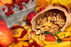 Nuts in a sack, fruits and vegetables on fallen leaves background, autumn season Stock Photos