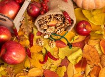 Nuts in a sack, fruits and vegetables on fallen leaves background, autumn season Stock Photography