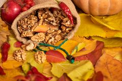 Nuts in a sack, fruits and vegetables on fallen leaves background, autumn season Royalty Free Stock Photography