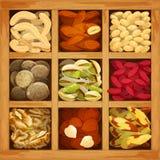 Nuts Sammlung sortiert Stockfotografie