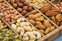 Nuts and seed collection royalty free stock image