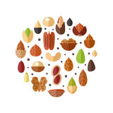Nuts and seeds circle vector background. Flat design. Stock Photography