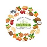 Nuts and seeds. royalty free illustration