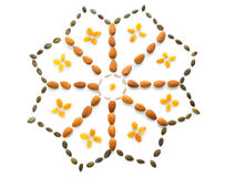 Nuts and seeds flower shape Stock Photo