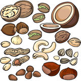 Nuts, seeds icon set Royalty Free Stock Photo
