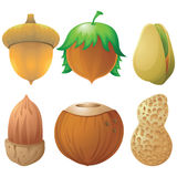 Nuts and seeds icon  set Royalty Free Stock Image