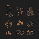 Nuts and seeds icon set. Stock Photo