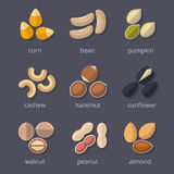 Nuts and seeds icon set Royalty Free Stock Photo