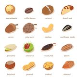 Nuts and seeds icons set, isometric style Royalty Free Stock Photography