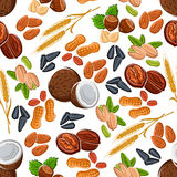 Nuts, seeds, legumes and cereal pattern Royalty Free Stock Images