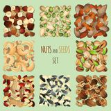Nuts and seeds set Stock Photo