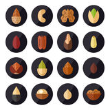 Nuts and seeds vector icons set. Flat design. Nuts and seeds vector icons set. Modern flat design Royalty Free Stock Photos