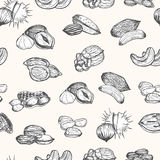 Nuts Set Hand Draw Sketch Background Pattern. Vector Stock Photography