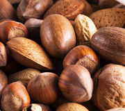 Nuts of several types Stock Images