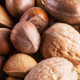 Nuts of several types Stock Photography