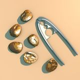 Nuts with shell and tool to split the nuts, split, seen from above Royalty Free Stock Photography