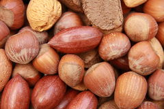 Nuts in Shells 2 Royalty Free Stock Photos