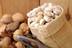 Nuts in shells Royalty Free Stock Photos