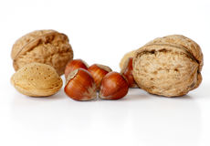 Nuts with shells isolated on white. Mixed nuts such as almonds,walnuts and hazelnuts with shells isolated on white Royalty Free Stock Image