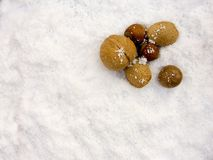 Nuts in snow Royalty Free Stock Photography
