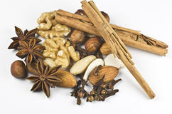 Nuts and spice. On white Stock Photography