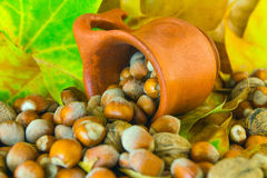 Nuts spilled from ceramic pot Stock Photo