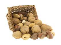 Nuts spilling from basket Stock Images