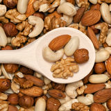 Nuts on a spoon Stock Image