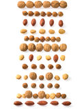 Nuts strips Stock Photography