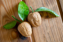 Nuts with tangerine leaves Stock Photography