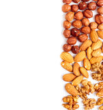 Nuts and text area Royalty Free Stock Images