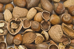 Nuts texture. Royalty Free Stock Photo