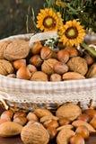 nuts torkade figs Arkivbild