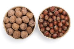 Nuts in two cups royalty free stock image