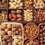 Nuts. Stock Images