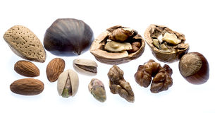 Nuts. Various types of nuts on light box Royalty Free Stock Photos
