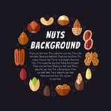 Nuts vector background. Modern flat design. Circle frame. Stock Image