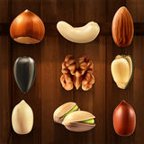 Nuts vector icons Stock Photography