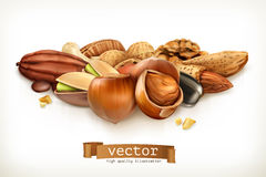 Nuts, vector illustration Royalty Free Stock Photography